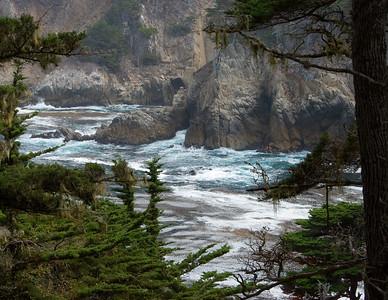 Cypress Cove, Point Lobos