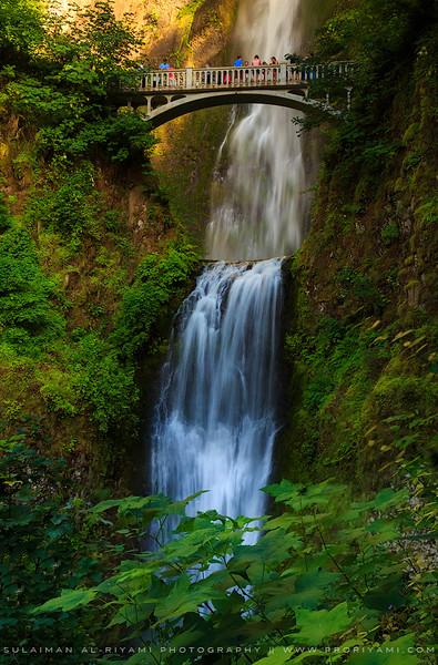 """Multnomah falls, Collumbia River Gorge, Oregon """"USA."""