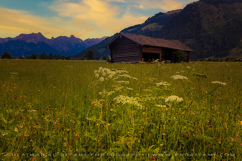 wooden barn during sunset