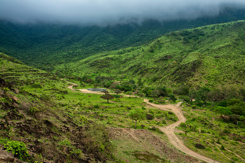 "Dhofar  Mountains ""Oman"""