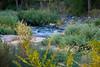 2007 Colorado Trip - Cherry Creek (time expose 20sec)