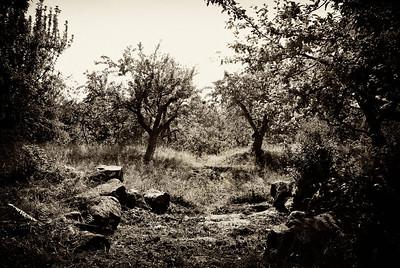 Den förlorade trädgården, trädgård vid Källslättens fäbodar
