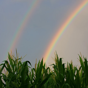 Double Rainbow...Hope for drought stricken Iowa corn?  Johnson County, Iowa
