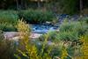 2007 Colorado Trip - Cherry Creek (time expose 15sec)