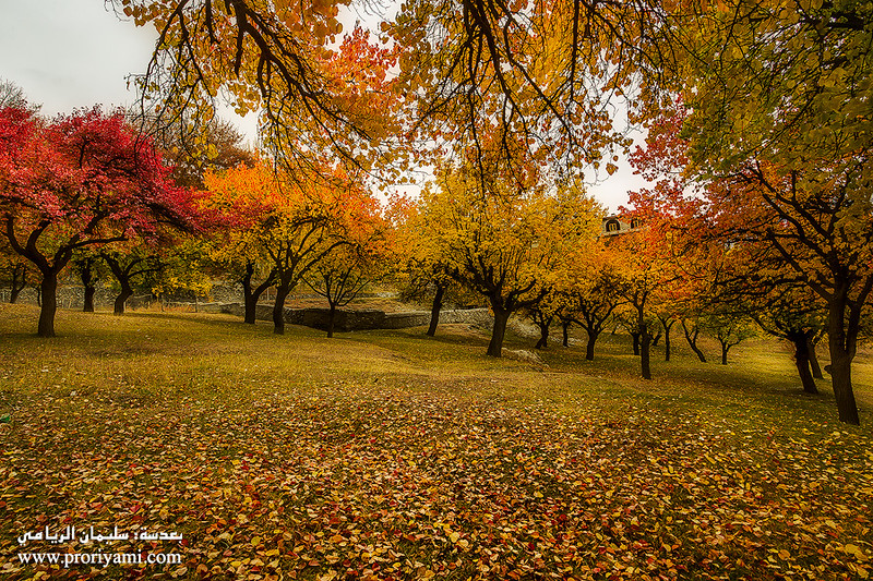 """Hunza , Karimabad in autumn """"Pakistan""""."""