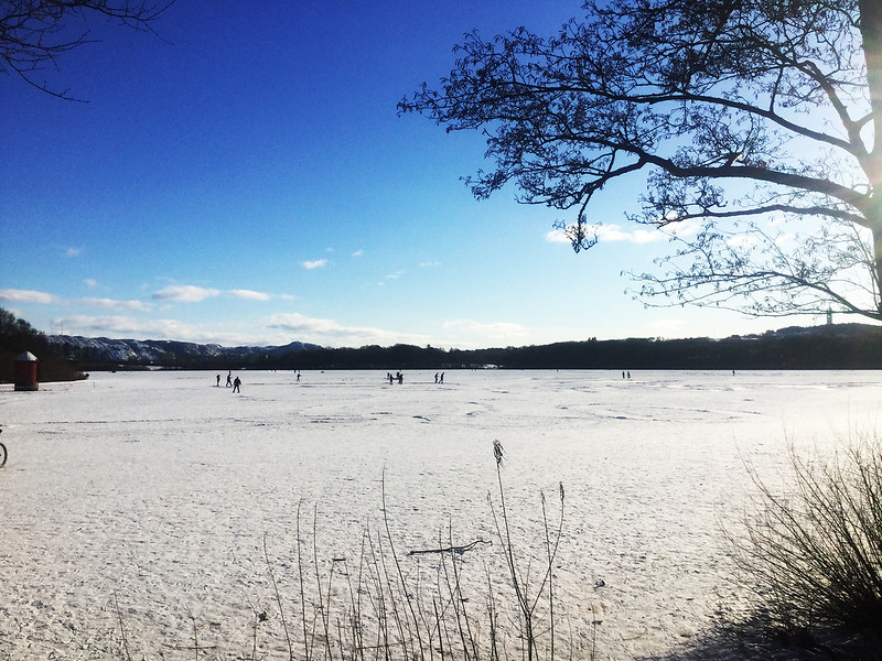 Mosvatnet, Frozen Lake (February 2021)