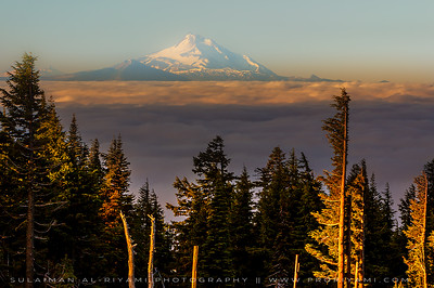 Mount Hood over morning clouds, Oregon, USA