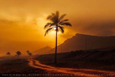 Mughsail Beach, Salalah, Oman