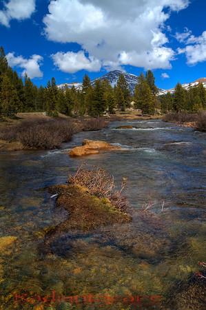 Mt Dana,  Tioga Pass, Yosemite NP