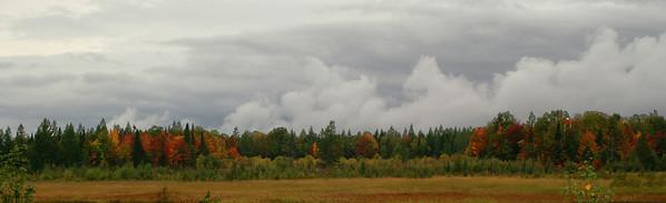 Scott's Marsh Wilderness Area<br /> Hiawatha National Forest
