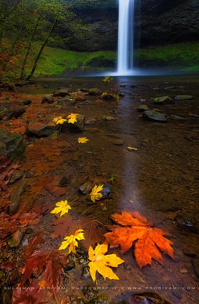 Siver falls Autumn