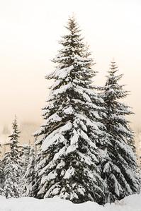 winter_12012006_0004