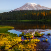 Mt. Rainier Reflection, Washington,  USA