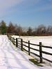 035 2006 Nov-Dec Storm - Fenton Park