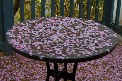 A pink table cloth