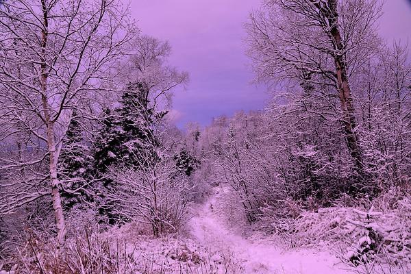 Winter, Snow,