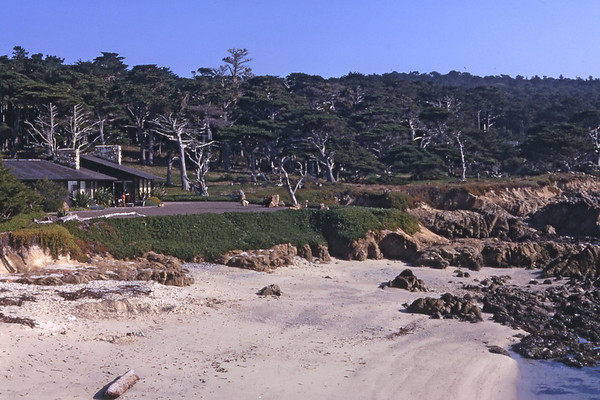 3*Fri, Dec 29, 1967<br /> *People:<br /> Subject:beach, house<br /> *Place: 17 mile drive<br /> Activity: <br /> Comments: