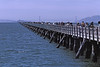 4*Thu, Mar 14, 1968<br /> *People: many<br /> Subject: Berkeley pier<br /> *Place: Berkeley<br /> Activity: <br /> Comments: