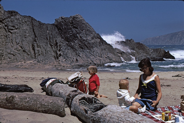 5*Sun, Jun23, 1968<br /> *People:SLR<br /> Subject: logs, wave<br /> *Place: Pt Reyes, again<br /> Activity: <br /> Comments: like a postcard, but not posed