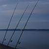 """""""Fanget"""" ved Høll sidst i september 2011, en søndag aften ved 21tiden. En tysker sad i strandkanten og fiskede, med 3 stænger, men fangede ikke noget. Vi fik en længere snak om foto/fiskeri, og jeg skød dette billede."""