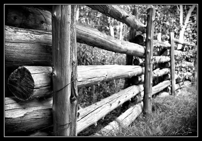 Log Fence at Presqu'ile