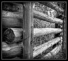 Log Fence at Presqu'ile (Alternate Edit)