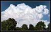 Menacing Cumulus Congestus Clouds