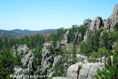 Black Hills, SD July, 2013