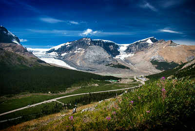 Athabasca Glacier from Wilcox Pass