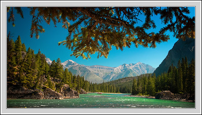 bow river, august