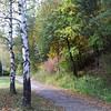 RZ-Alland Park