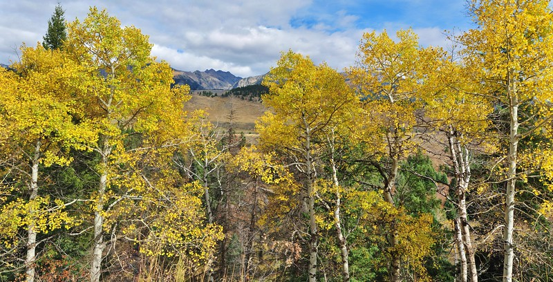 #Pano Fall colors West Fork