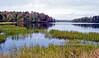 Jean Lake 2020.9.24#2179.2. Rickets Glen State Park, Pennsylvania.