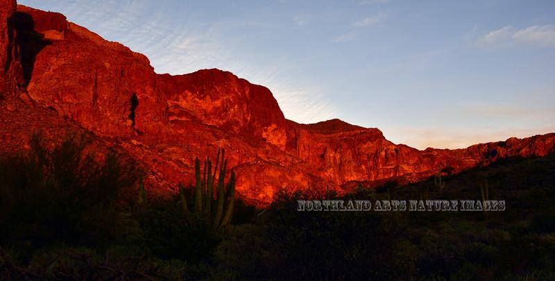 Sunset on the Ajo Mountains near Estes Canyon. 2019.3.5#170. Organ Pipe Cactus Nat. Monument Arizona.