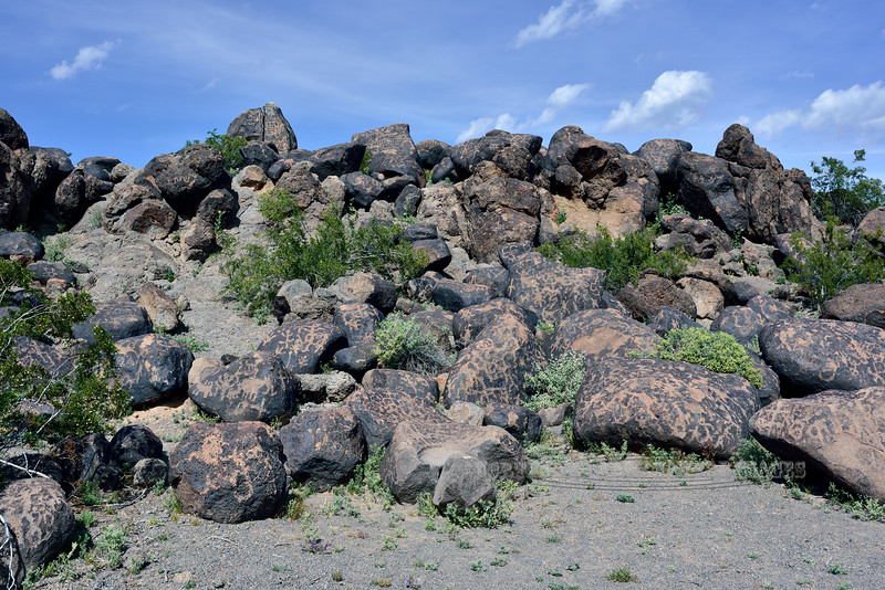 Petroglyphs 2019.3.6#425. Another boulder front center was used as a Metate. Painted Rock petroglyph Site Arizona.