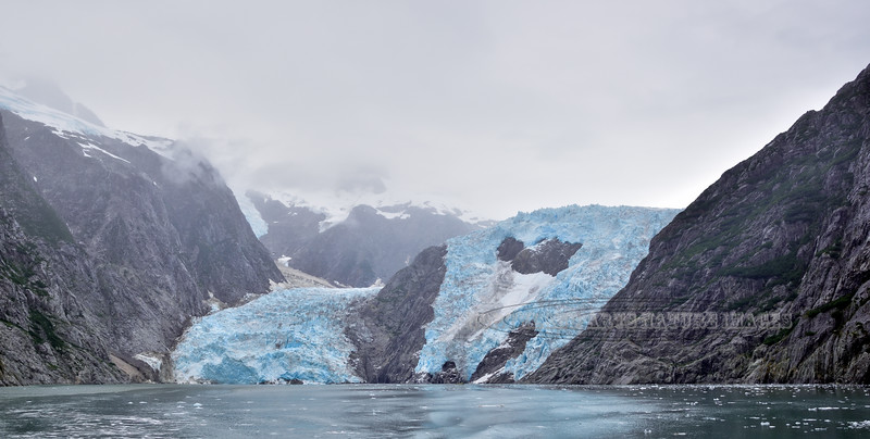 Glacier, Northwestern. Kenai Fjords Nat. Park, Alaska. #84.433.
