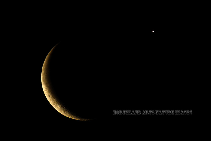 The Crescent Moon and Venus 2015.12.7#1087. Anchorage Alaska.