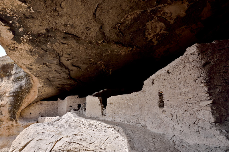 NM-GCD14-2019.11.9#4026. Gila Cliff Dwellings. Near the top of the exit area. Gila Wilderness, New Mexico.