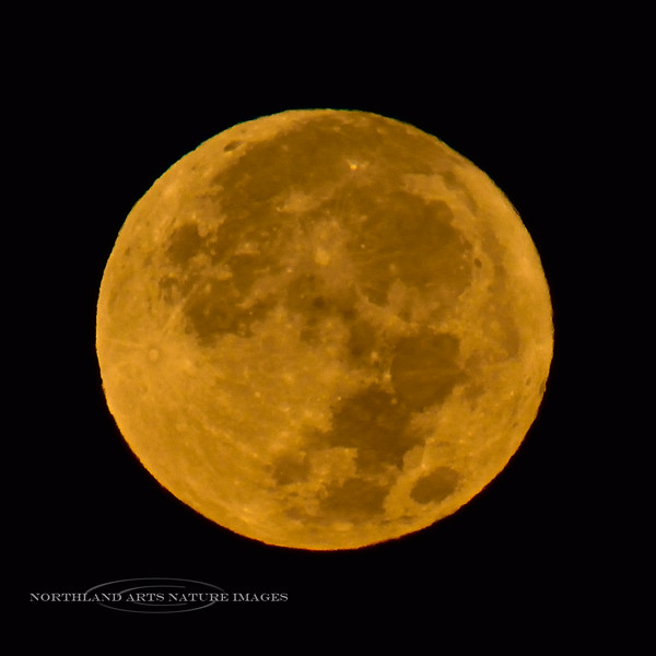 2020.10.31#5665.3. The Halloween Blue Moon setting in Prescott Valley Arizona