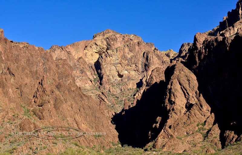 Palm Canyon 2020.2.24#5888.2. In a steep narrow ravine on the left backside of this canyon are the famous Desert Fan Palms. These are the only native naturally occurring Fan Palms in Arizona. Kofa Nat. Wildlife Refuge Arizona.