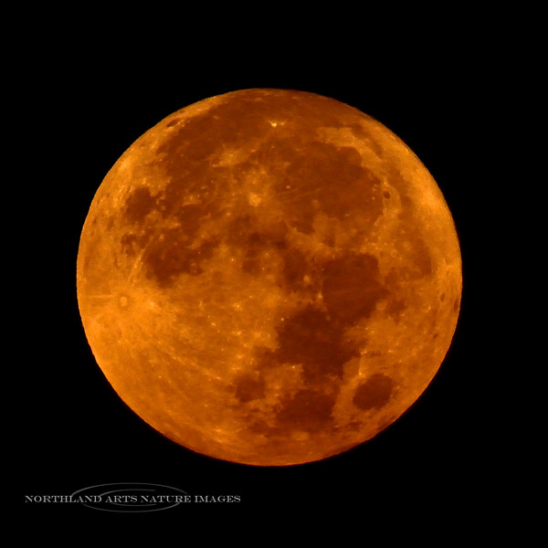 The Full Sturgeon Moon 2020.8.3#3498.2. Looks like an eclipse moon glowing orange from all the smoke we had from several fires burning all around us. Prescott Valley Arizona.