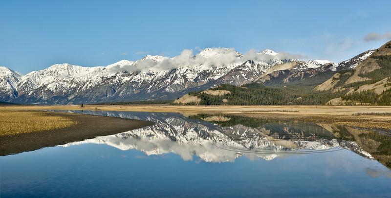 Slim's River Slough, Kluane Nat. Park, Yukon. 515.071.