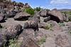 Petroglyphs 2019.3.6#405. Painted Rock Petroglyph Site Arizona.