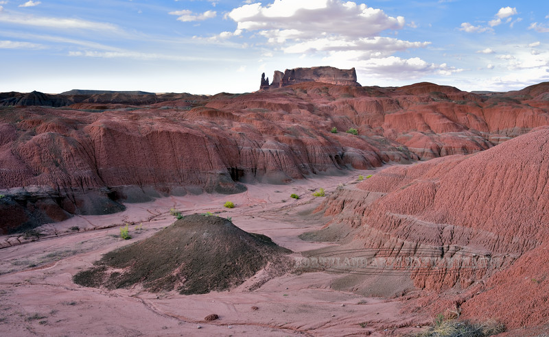 One of the many moods of the Painted Desert. 2017.9.16#648.3. Apache County Arizona.