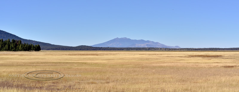 A view across Mormon Lake. 2019.10.2#220#3. Mormon Mountain is on the left, Humphrey's Peak and the rest of the San Francisco's are in the background. Humphrey's is the highest peak in Arizona. The San Francisco Peaks are the remains of an eroded stratovolcano.