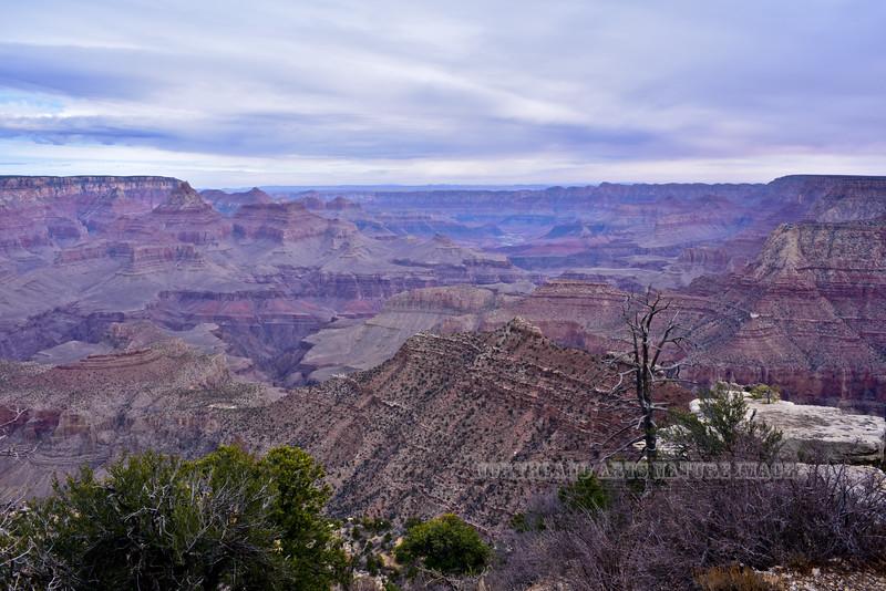 AZ-GCNP, Grand Canyon, Arizona. #1129.283.