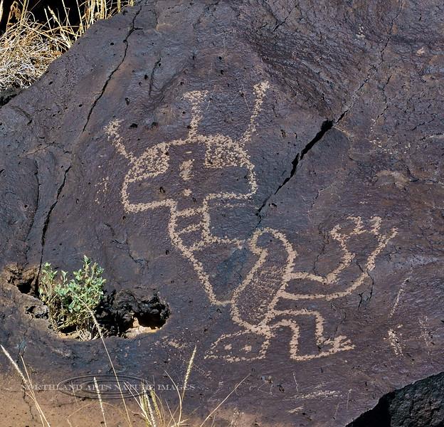 A one of a kind most unusual Petroglyph. 2019.11.12#2029.2b. Rinconado Trail, Petroglyph Nat. Mon., New Mexico.