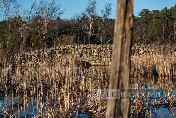 Ipswich River Wildlife Sanctuary