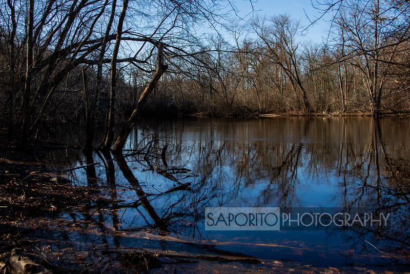 All images are available as high-quality prints from our secure website. Matting & framing options available at check out.