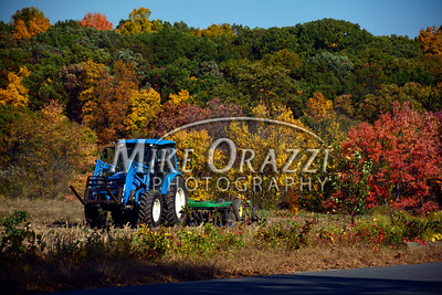 10/18/2016 Mike Orazzi | Staff Fall color along Peacedale Street in Bristol Tuesday afternoon.